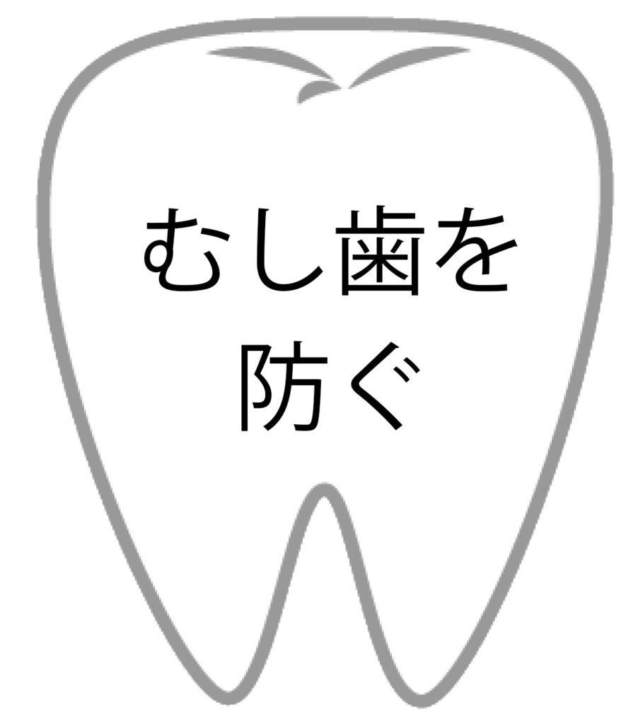 歯の効果1