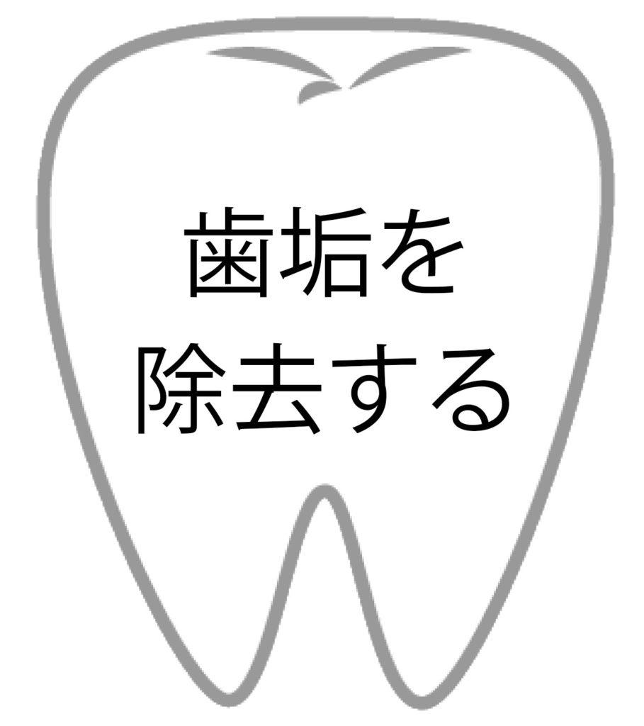 歯の効果3