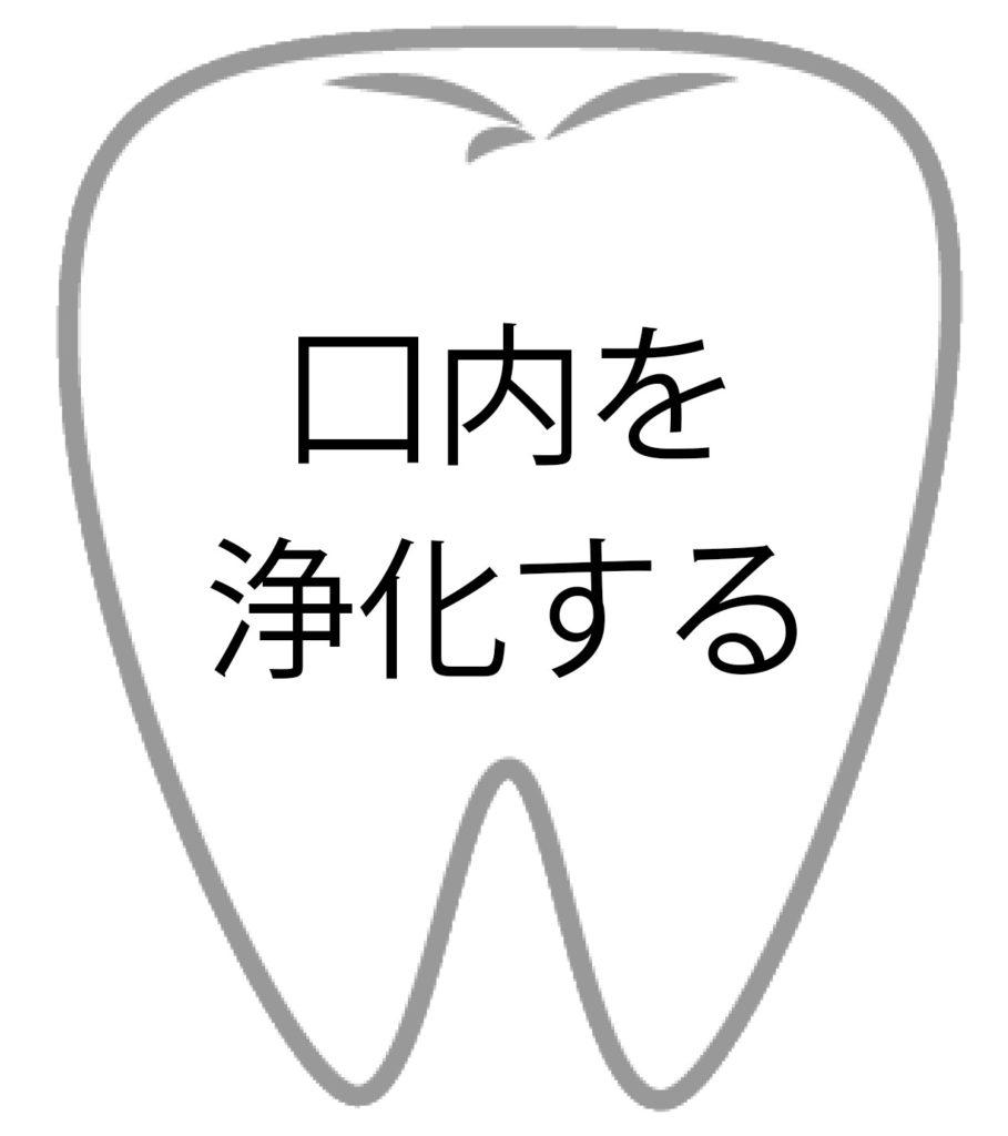 歯の効果4