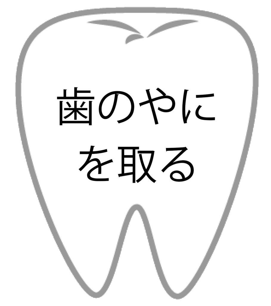 歯の効果5