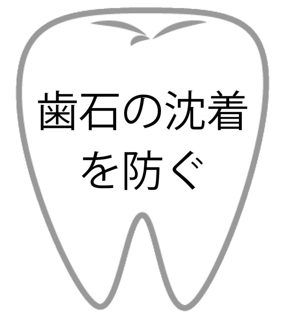 歯の効果6